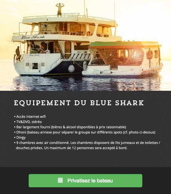 surfatoll-blue2